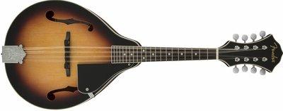 Fender concert tone mandoline pack