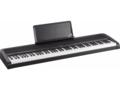 Korg B1 piano
