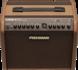 Fishman Loudbox Mini Amplifier Pro LBC 500 op Batterij_